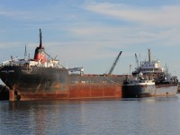Canadian Leader, at the scrapyard, Port Coulborne, ONT. 9/18/2011