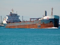 Tim S. Dool of the Algoma fleet sails upbound in the St. Clair river at Sarnia, one of the oddballs in the fleet having been built with all cabins aft but no self unloading equipment was ever installed.