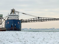 The Algorail loads salt destined for Toronto. She was built at Collingwood Shipyards in 1968.